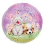 21858-get-well-soon-cats-and-dogs-small n